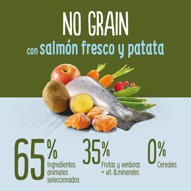 True Instinct No Grain - Natures Variety - Pienso sin Cereales para Perro Junior Medium-Maxi con Salmón - 12kg