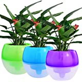 5 Pack Self Watering Planter White Flower Pot, cnomg 4 inch Plant Pots