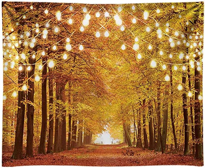 Vinyl 10x10ft Autumn Landscape Backdrop Photograph Background Forest Outdoor Tourist Thanksgiving Festival Party Background Indoor Room Wallpaper Children Adult Portaits Photo Studio