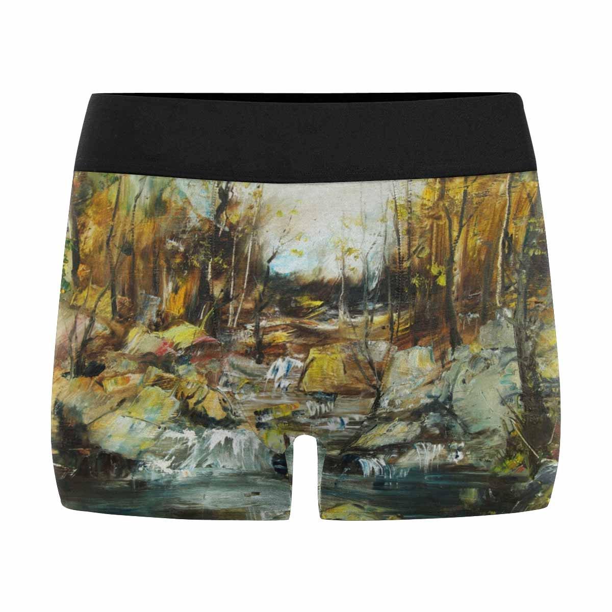 XS-3XL INTERESTPRINT Mens Boxer Briefs Underwear Rocks and Stream in The Forest