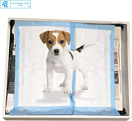 Almohadillas De Entrenamiento Cachorro Perro Mascota Pad Pee Underpads Desechables Extra Grande 10 Pack XL