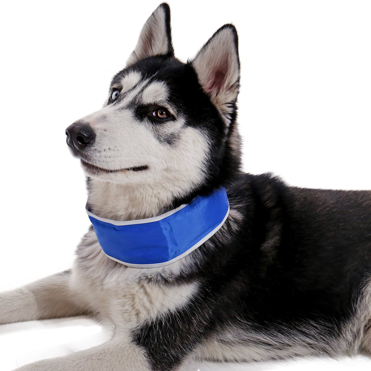 PAWZ Road Pet Cooling Neck Warp Cool Collar Summer Dog Cat Gel Pack Necklace for Dogs