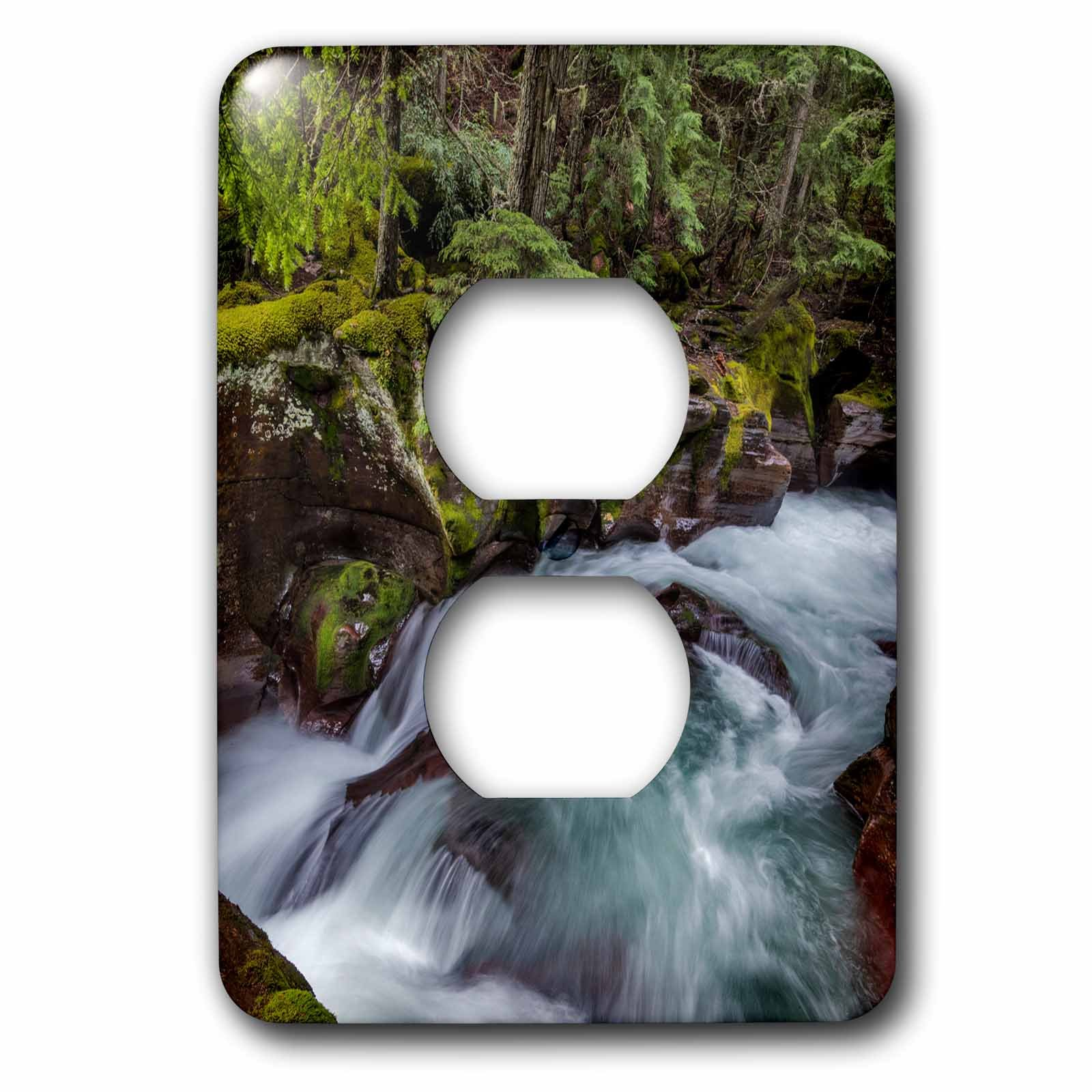 3dRose Danita Delimont - Rivers - Avalanche Gorge in Glacier National Park, Montana, USA - Light Switch Covers - 2 plug outlet cover (lsp_279213_6) by 3dRose