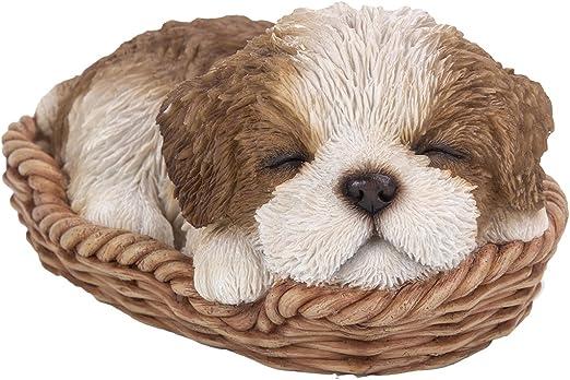 Amazon.com: Shih Tzu Cachorro en cesta de mimbre) Pet Pals ...