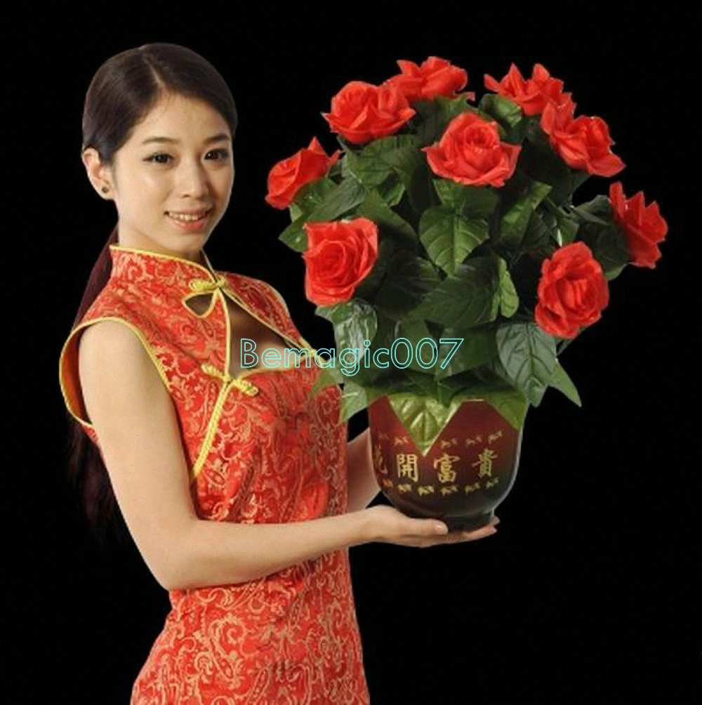 Remote-Control Blooming Flower Bush 10 Flowers - Stage Magic Tricks by Stage Magic Tricks