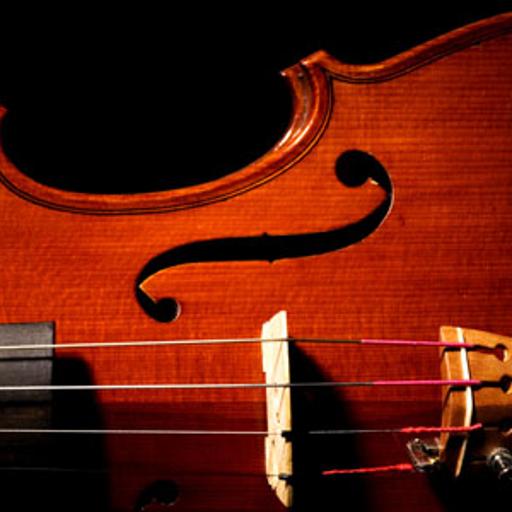 Violin Tuner (Best Trumpet Tuner App)