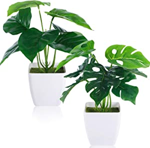 CEWOR 2 Packs Artificial Mini Greenery Potted Plants Fake Monstera Deliciosa and Scindapsus Leaves in Small Plastic Pot for Home Farmhouse Office Windowsill Bathroom Desk Decor