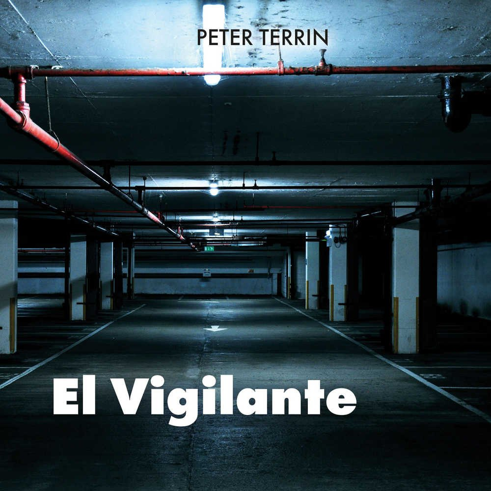 Synonyms of vigilante