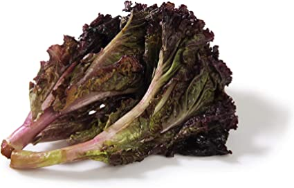 Fresh Lettuce Red, 1 Piece
