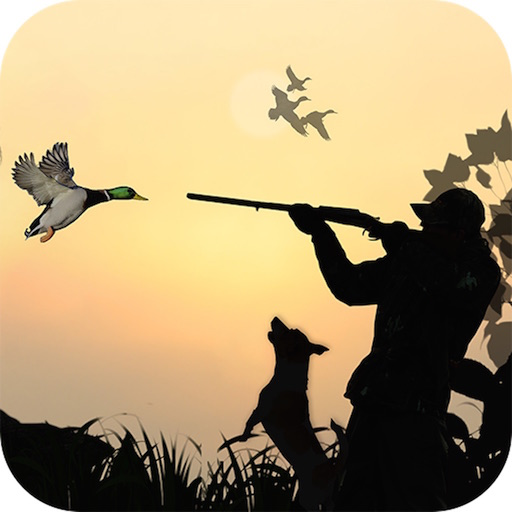Duck Hunting 3D Sports (Duck Hunting Games)