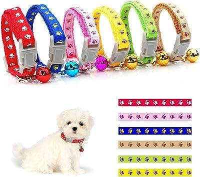 faire un collier pour chien maison