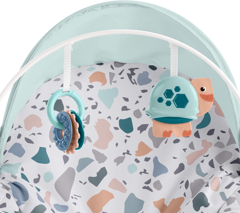 mehrfarbig Fisher-Price GMD21 2-in-1 Umwandelbarer Schaukelsitz mit Verdeck verstellbare Sitzpositionen und Spielzeuge zum Anstupsen f/ür Babys und Kleinkinder zum F/üttern