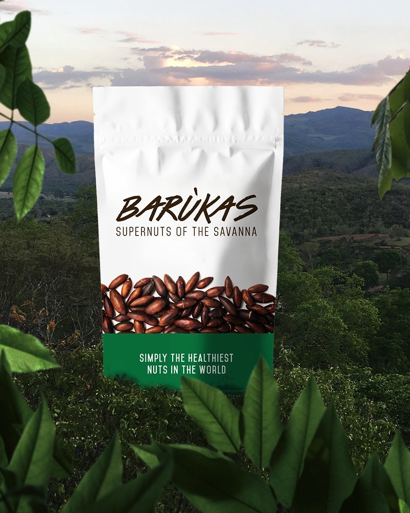Barùkas: The Healthiest Nuts in the World - Roasted in a 12 ounce (340 gram) Resealable Bag for Freshness. Delicious / Wild Grown / Sustainable / High Fiber. by Barùkas