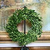 "Preserved Garden Boxwood Wreath 14"""