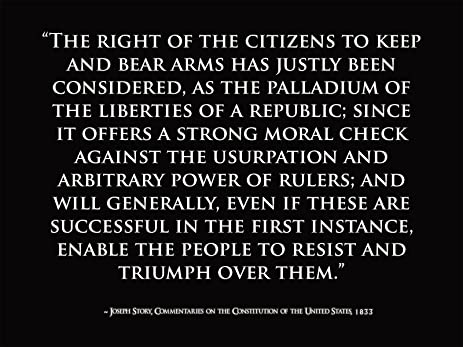 Constitution Quotes Magnificent Amazon Motivational Poster Joseph Story Quote US Constitution