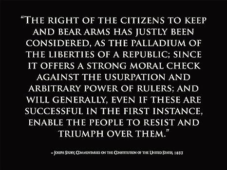 Constitution Quotes Simple Amazon Motivational Poster Joseph Story Quote US Constitution