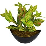 Fancy Mart Artificial Leaves Plant with Boat Shape Pot, 10 inches/25 cm
