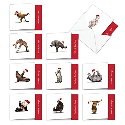 "10 Assorted YULETIDE ZOO YOGA Blank Christmas Cards W/Envelopes (4"" x 5-1/8"") - Boxed Set of Fun & Flexible Xmas Zoo Animals Dancing in Various Yoga ..."