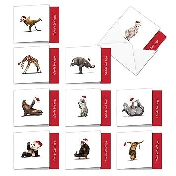 Amazon.com: Zoo Yoga all-occasion tarjeta de humor: Office ...