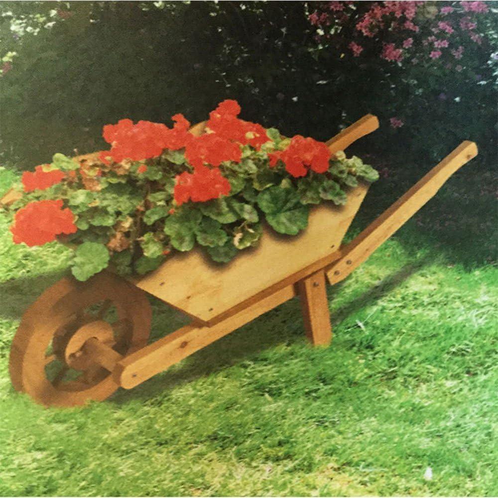Decorativa para todo tipo de clima de madera carretilla macetero: Amazon.es: Jardín
