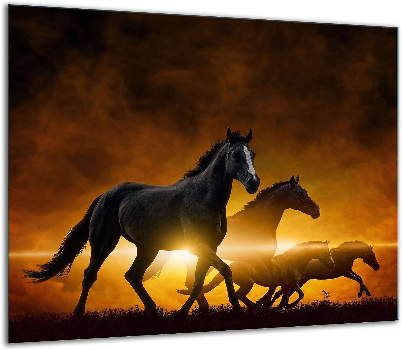 TMK - Placa protectora para cubrir la vitrocerámica de 60 x 52 cm de una sola pieza, para inducción, protección contra salpicaduras, placa de cristal, tabla de cortar, diseño de caballo, color negro