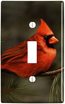 Amazon Com Graphics More Northern Cardinal Red Pine Perch Plastic Wall Decor Toggle Light Switch Plate Cover Furniture Decor