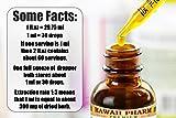 Reishi Alcohol-Free Liquid Extract - Tonic of