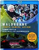 Berliner Philharmoniker - Waldbuhne 2015 from Berl [Blu-ray]
