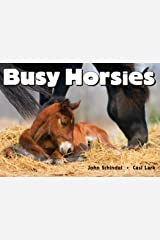 Busy Horsies (A Busy Book) Board book
