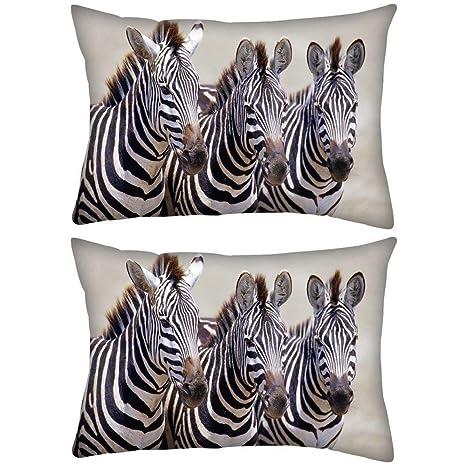 Red Zebra Funda de cojín con Estampado de Cebra roja, 3 ...