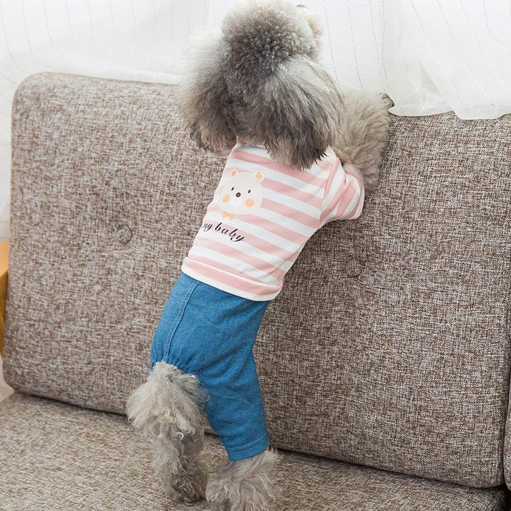 M CXQ Pet Small Dog Winter and Autumn Cute Striped Bear Denim Four-Legged Clothes (Size   M)