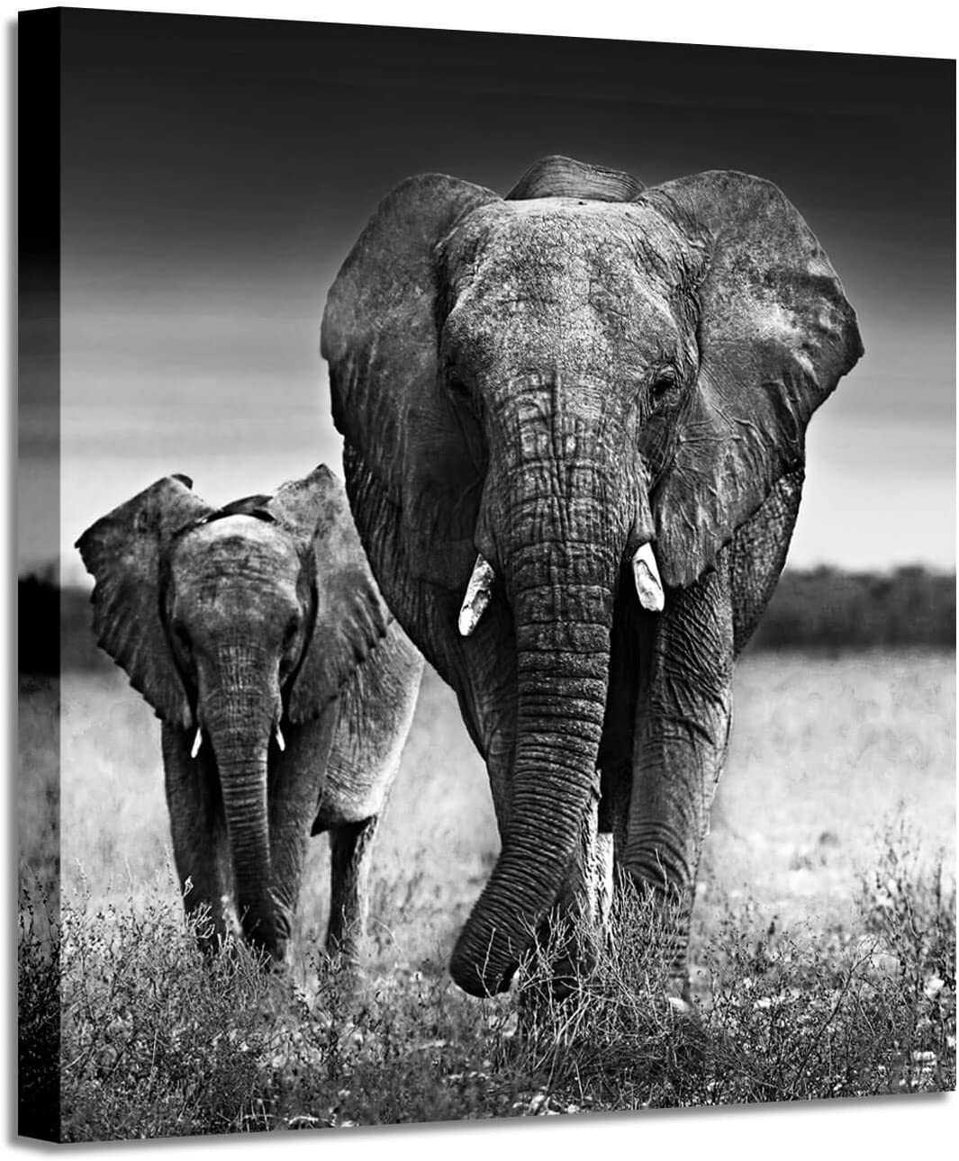 Wall Art Painting Wildlife Picture: Love of The Elephant Mama and Baby Print on Canvas for Bedroom (24''x24''x1panel)