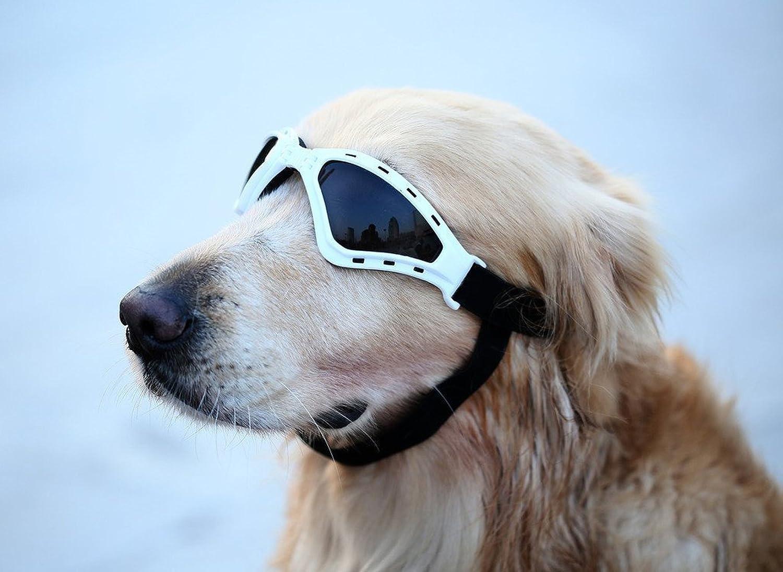 GabeFish Pets Adjustable Strap UV Protective Sunglasses for Medium Large Dogs Cats Eyewear Goggles