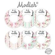Modish Labels Baby Nursery Closet Dividers, Closet Organizers, Nursery Decor, Baby Girl, Flowers, Roses, Pink, Mint, Shabby Chic
