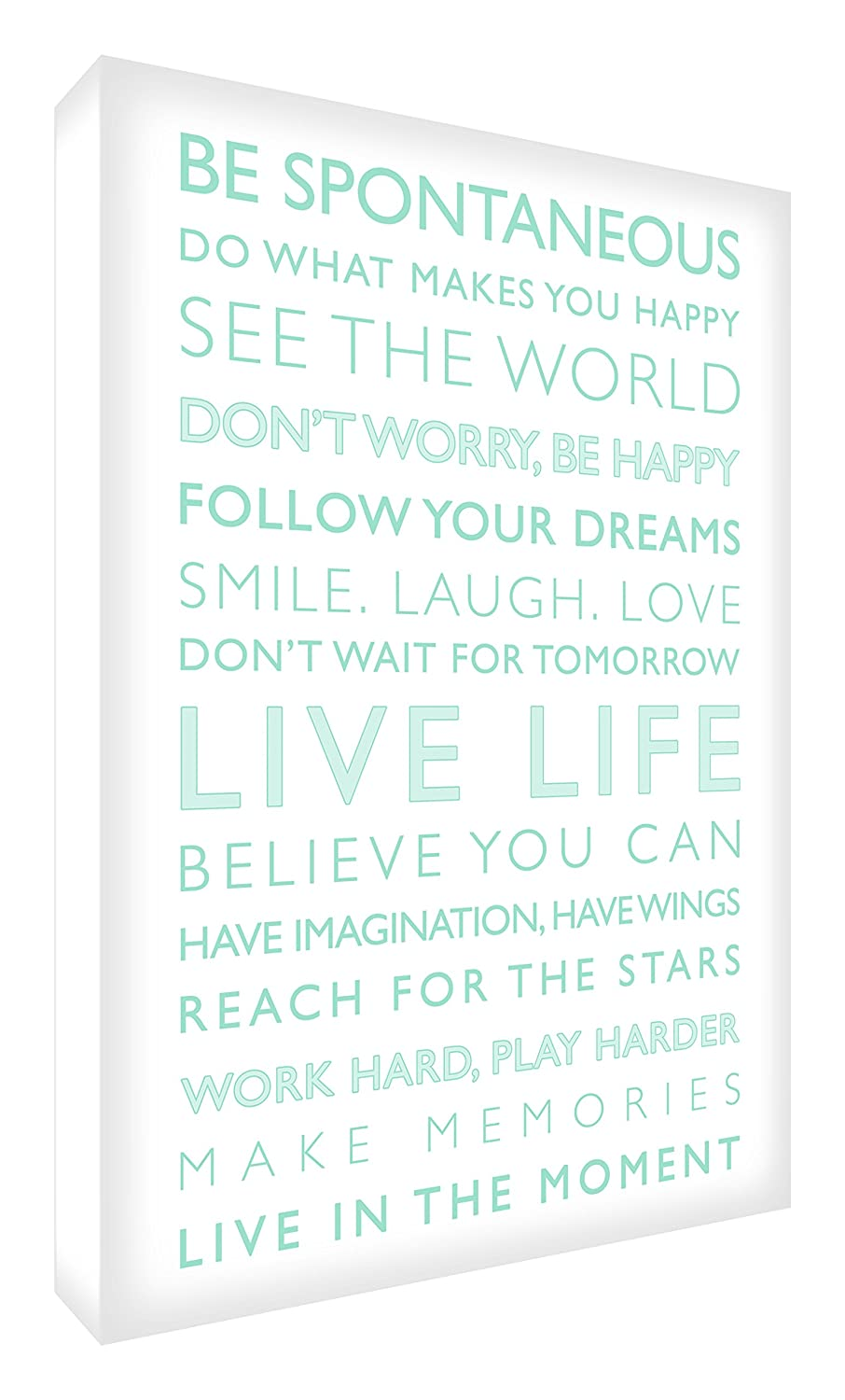 Feel Good Art Gallery Wrapped Box Canvas with Solid Front Panel (40 x 30 x 4 cm, White/Teal, Live Life from the Inspiration Collection) LVLF1216-07R-NV