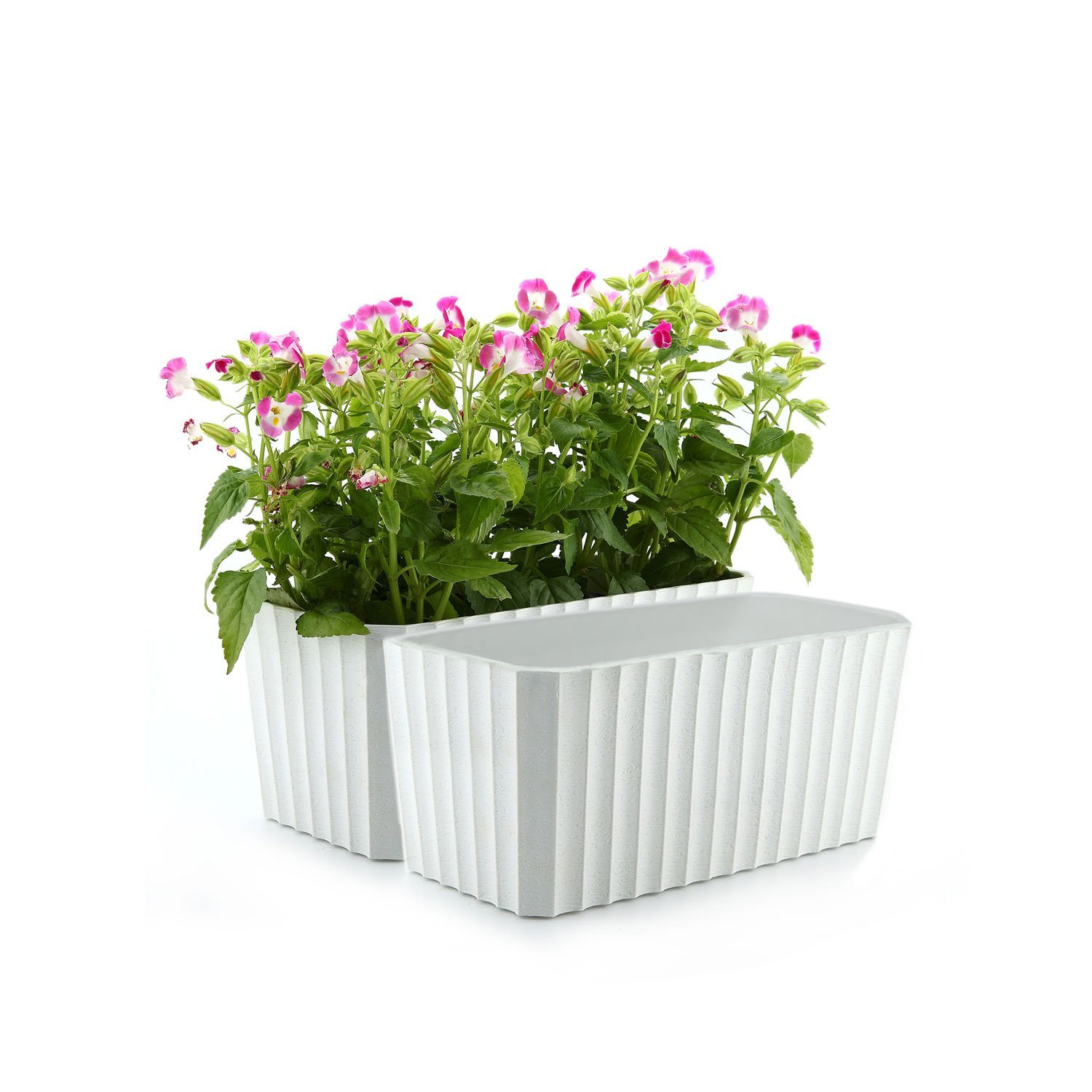 T4U Plastic Rectangular Self Watering Window Box with Water Level Indicator White Set of 2, Modern Decorative Planter Pot for All House Plants, Flowers, Herbs, African Violets, Succulents by T4U