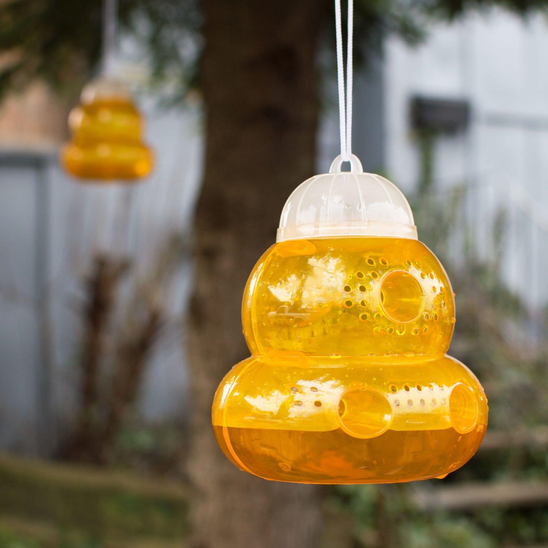Amazon.com : Aspectek Trap for Bees, Wasps, Hornets, Yellow ...