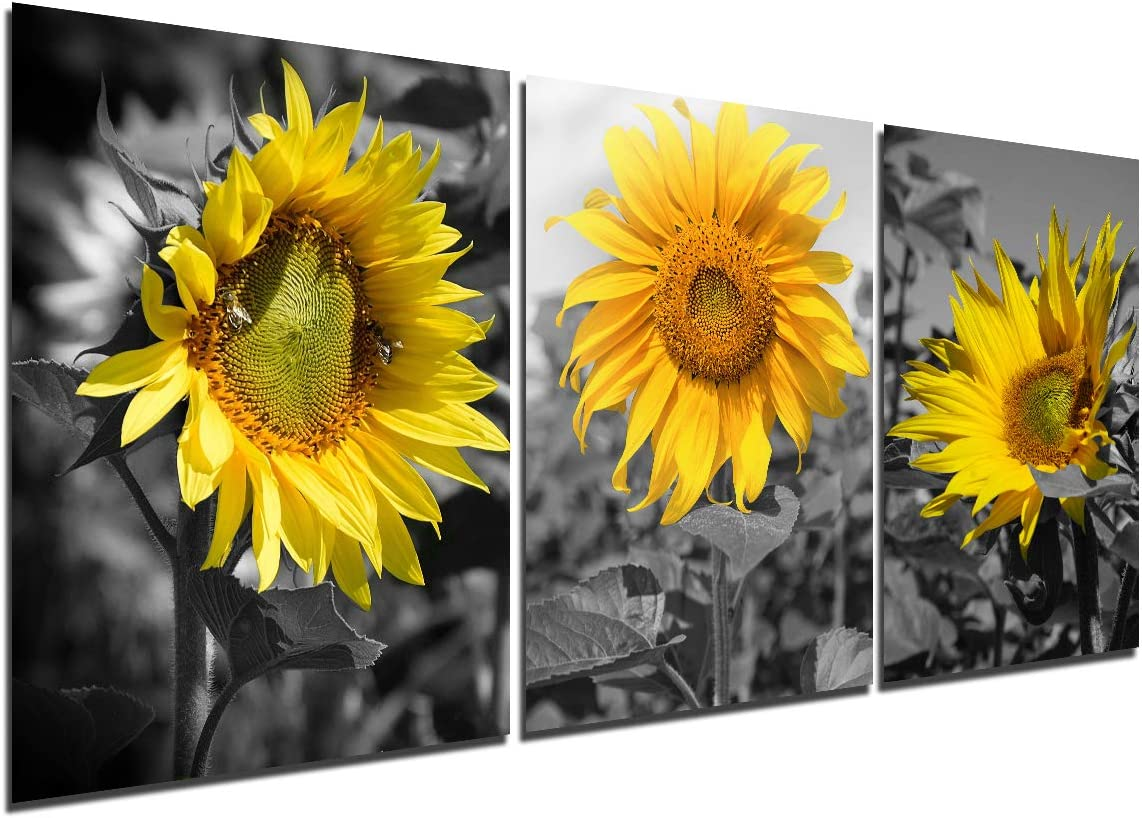 Sunflower Canvas Print Wall Art - Home Decor Picture Bedroom Kitchen Modern Landscape Painting Living Room Bathroom Decorations 3 Piece Set Artwork Scenery Flower Poster 12 x 16 inch unframed