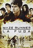 Maze Runner - La Fuga (DVD)