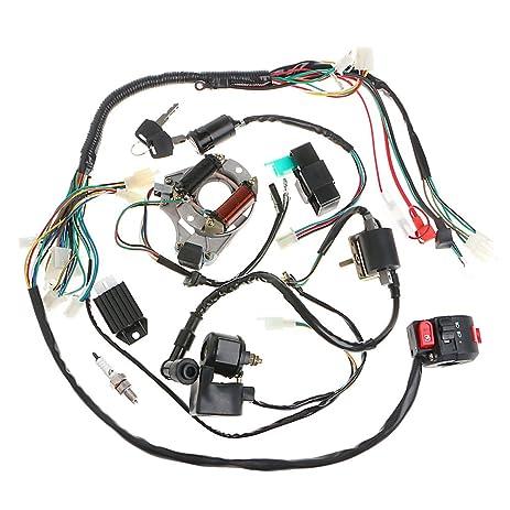 Amazon Minireen Full Wiring Harness Loom kit CDI Coil Magneto – Kick Start Wiring Diagram 110cc