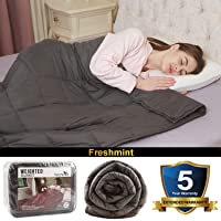 Deals on Freshmint Weighted 15 lbs Heavy Blanket Bed Quilt