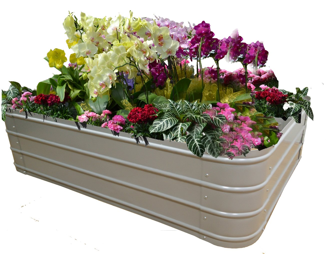 FOYUEE Raised Garden Bed Boxes, Elevated Garden Planting Beds for Growing at Home-a Wonderful Decoration in the Yard 151022 by FOYUEE
