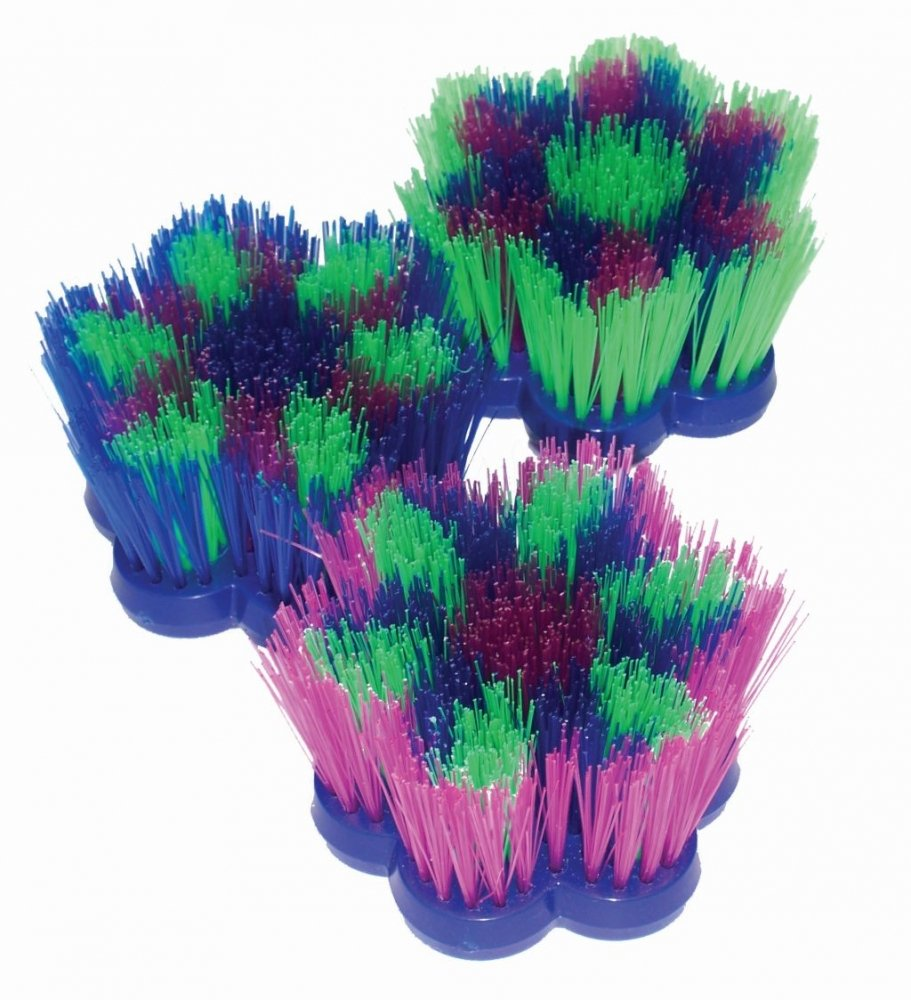 ASSORTED EPONA BRUSH FLOWER DANDY