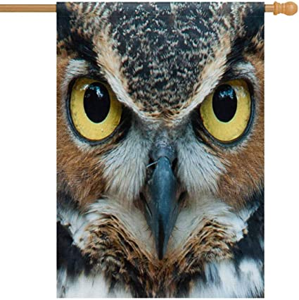 Amazon Com Interestprint Great Horned Owl Staring With Golden Eyes House Flag Decorative For Garden And Home Decorations House Banner 28 X 40 Inches Without Flagpole Garden Outdoor