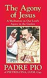 The Agony of Jesus