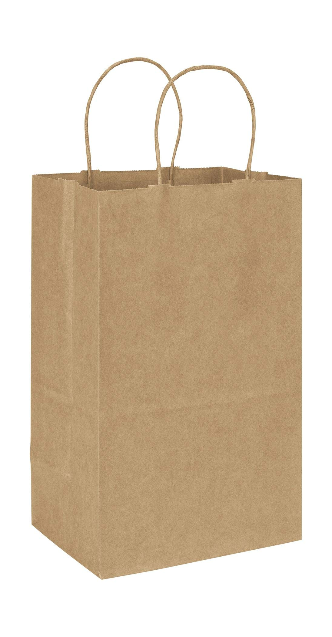 Recycled Kraft Paper Shoppers Debbie, 8 3/4 x 6 x 14'' (250 Bags) - BOWS-14-080613-RK