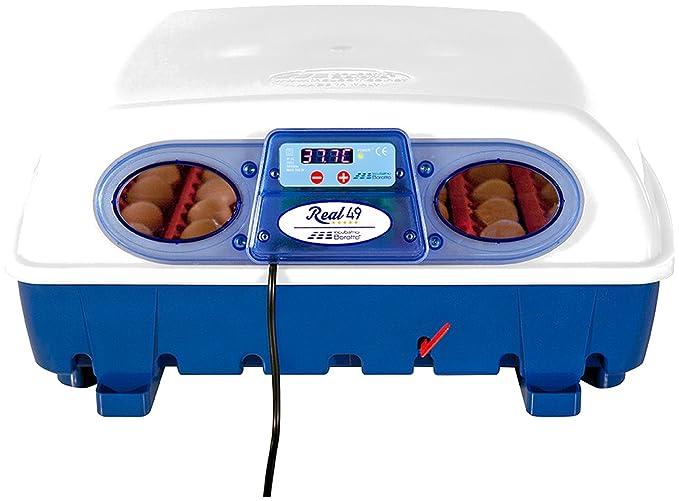 Borotto - Incubadora para huevos, digital, semiautomática: Amazon.es: Productos para mascotas