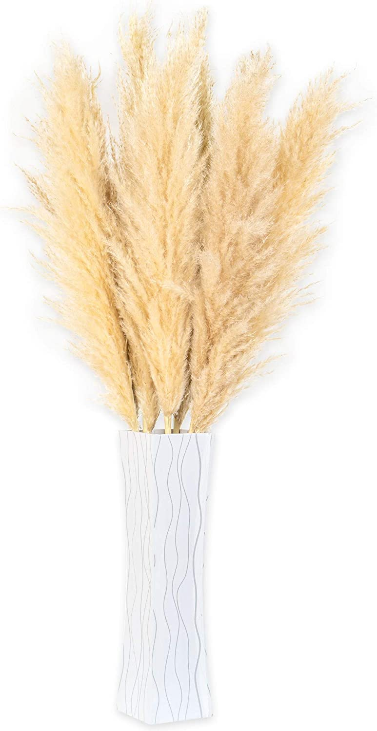 Natural Dried Pampas Grass Decor - 8 Pieces/Stems with Vase Included - 97cm/38 inches - Tall Fluffy Plumes for Wedding Decor, Flower Arrangement, Home Decor (Brown)