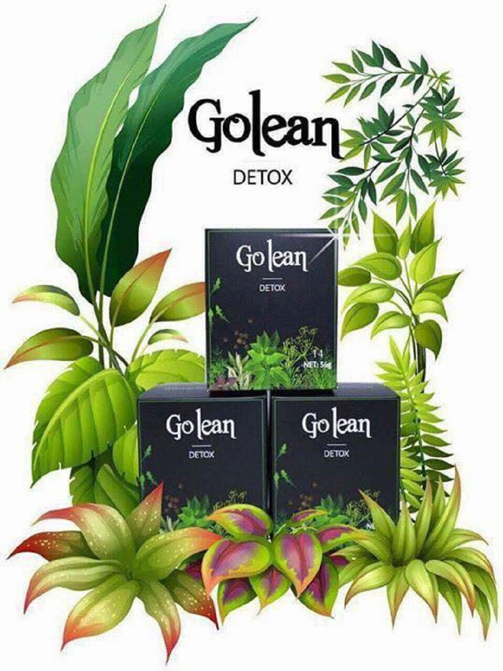 1 Box x 14 Capsules - Golean Detox herbal tea help weight loss, 100% Natural Weight Loss Tablets by Mat Xi S.G Co.Ltd - Vietnam