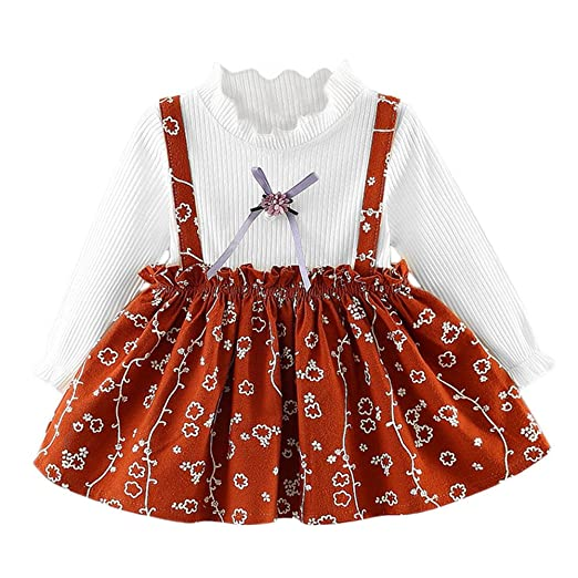 b0c93c6b8924 Baby Girls Cute Floral Dresses Newborn Infant Flower Clothes for 0-24  Months Long Sleeve